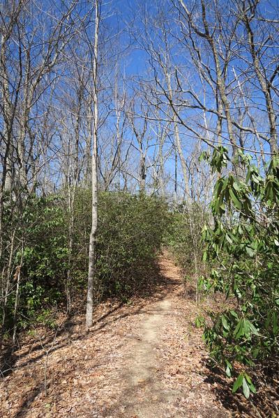 Devils Elbow Trail - 3,800'