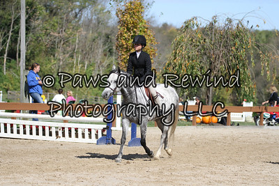 Saturday: Pre Children's Horse and Pony U/S