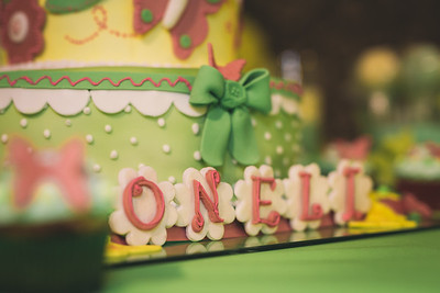 Oneli 1st Birthday Party