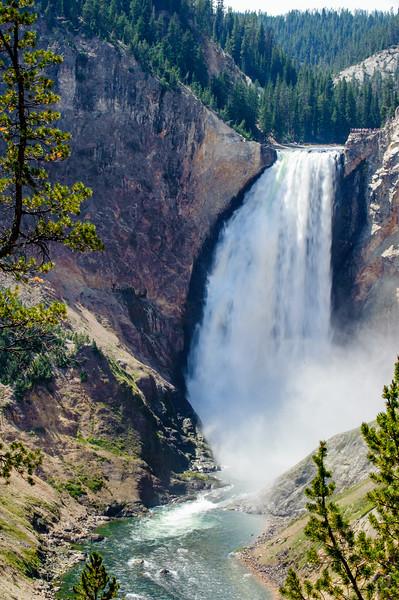 20130816-18 Yellowstone 229.jpg
