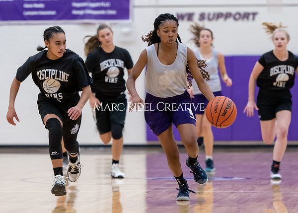 Broughton girls basketball vs Wake Forest. November 14, 2019. D4S_0158