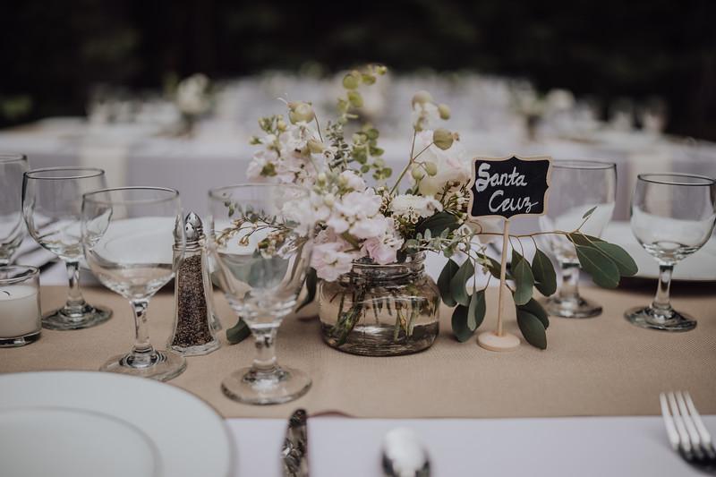2018-05-12_ROEDER_JulieSeth_Wedding_ROEDER1_0060.jpg