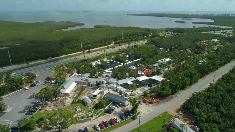 Theater of the sea Islamorada Florida keys 4k video