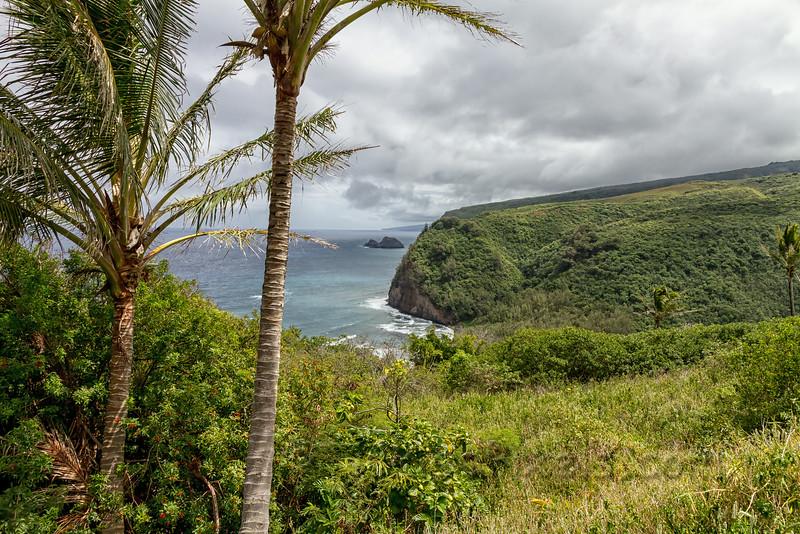 Pololū Valley and Beach