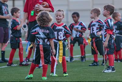 2017 - Oldsmar Falcons (Fall)