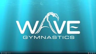 Promotional & Web videos