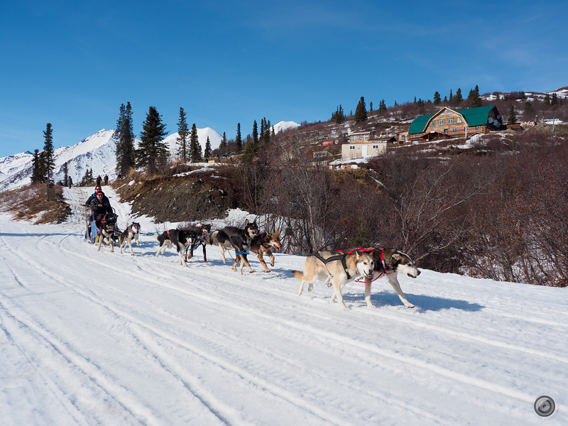 20190326_alaska_trip_alpine_creek_lodge_2621.jpg