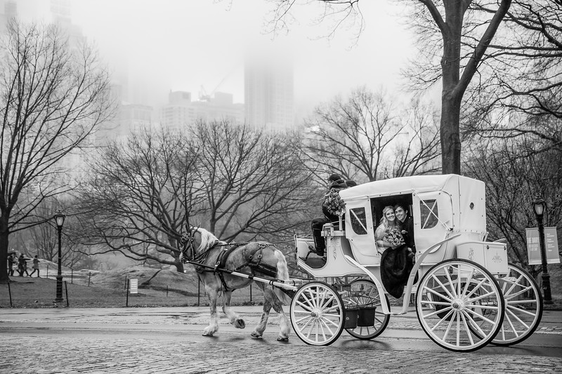 Central Park Elopement - Kathlynne & Kristian-19.jpg