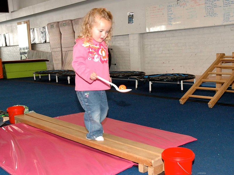 Dunedin Gymnastic Centre 41 Willis St - Photos for Nola Paterson's Book