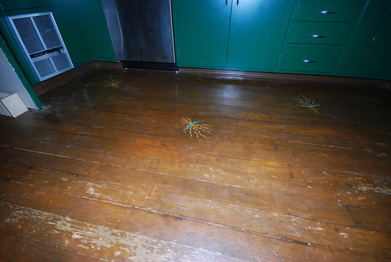 Designs were painted onto the kitchen floor.  Too bad the floor needs a sanding and re-sealing.