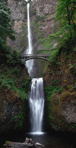 Multnomah Falls  Photo # 4