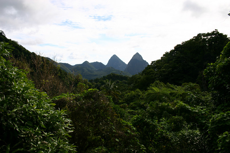 St Lucia 2004 088