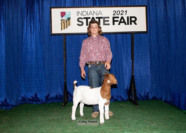 4-H Boer Goats