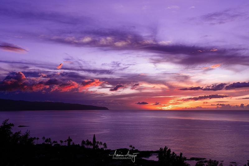 HawaiiOct2019-8.jpg