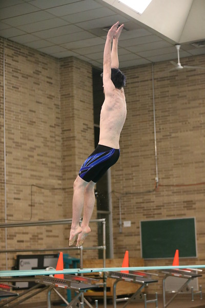 High School Boys Diving - UP Finals - 02/20/15