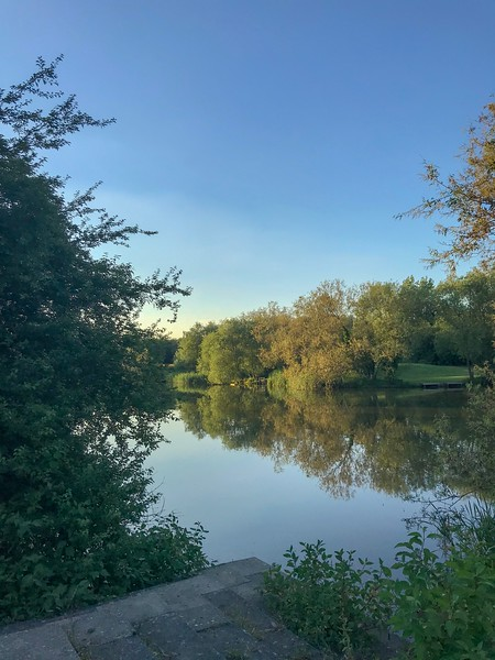 Reflections - 18