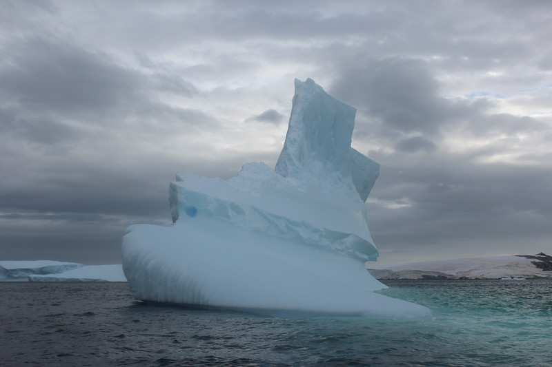 Antarctica 217.JPG