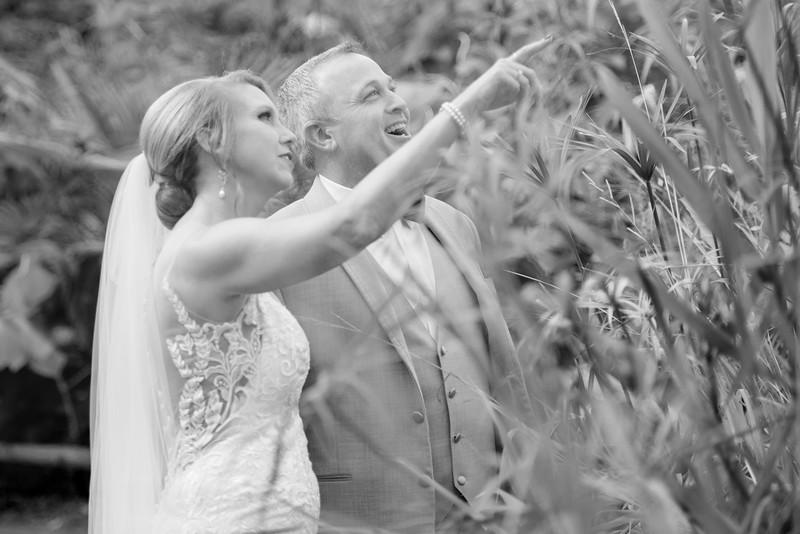 2017-09-02 - Wedding - Doreen and Brad 5083.jpg
