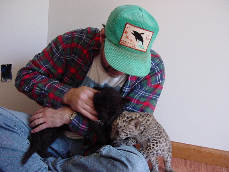 leopards2003 018.jpg