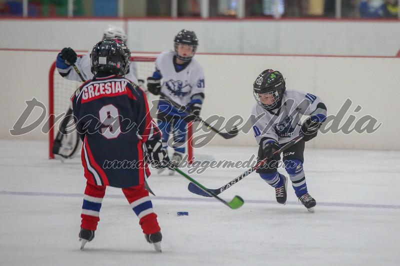 Blizzard Hockey 111719 7709.jpg