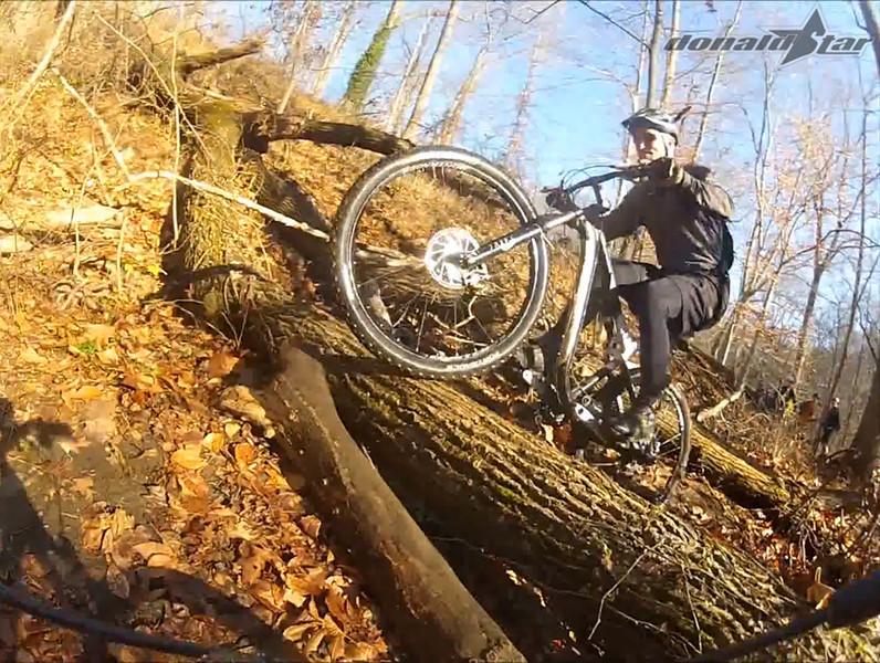 log ride 3.jpg