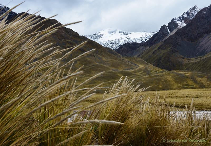 Peru 2017-5734.jpg