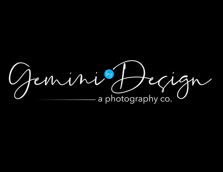 Gemini_Logo3-01 White Logo JPEG.jpg