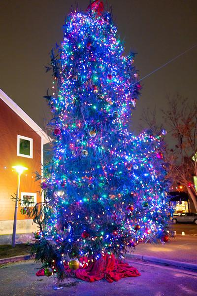 Del Ray Christmas 157.jpg