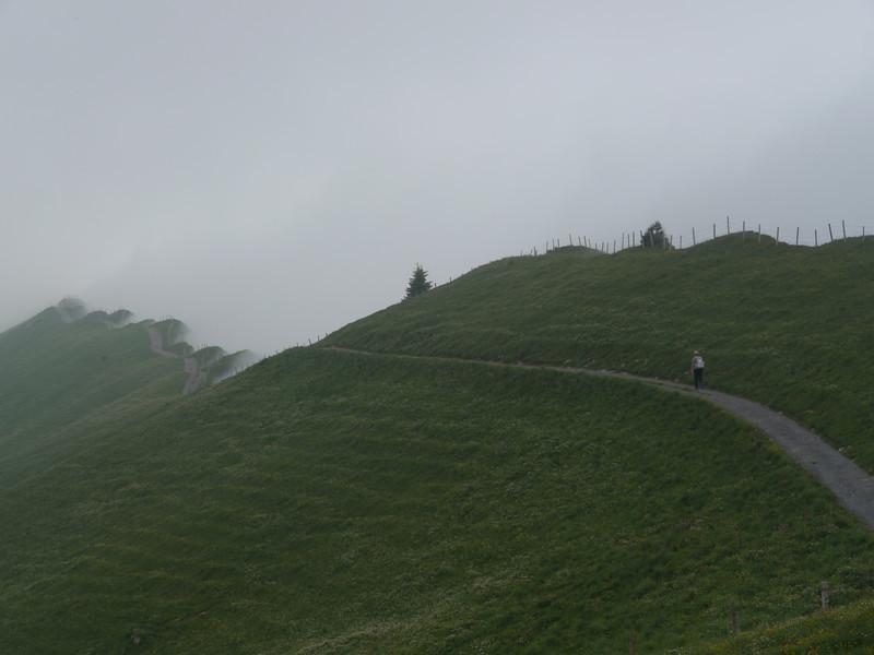 @RobAng 2013 / Bergspaziergang Hochybrig, Muotathal, Illgau, Kanton Schwyz, CHE, Schweiz, 1742 m ü/M, 2013/07/07 14:25:11