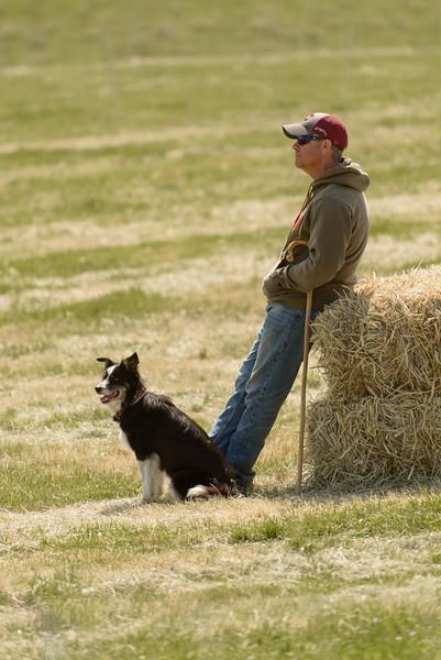 Sheepdog Trials 6-1673.jpg