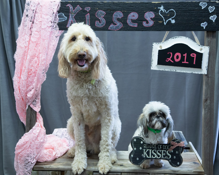 GDU Kissing Booth 2019-4.jpg