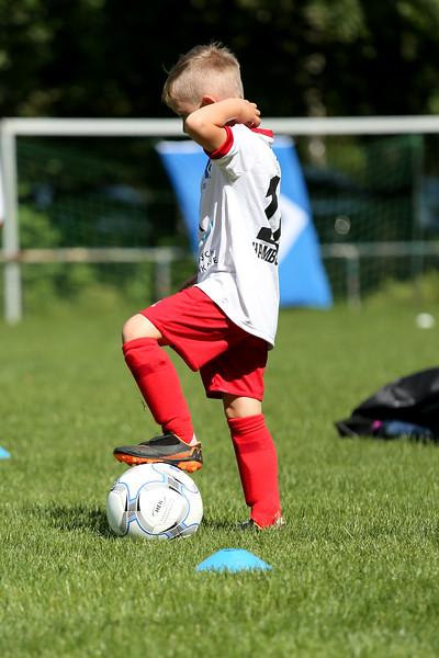 hsv_fussballschule-044_48047989268_o.jpg