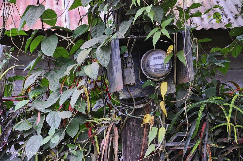 Cano Negro: Electric Meter