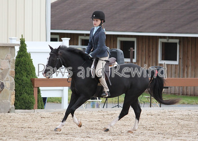 The Ridge at Riverview Schooling Show 09/22/12
