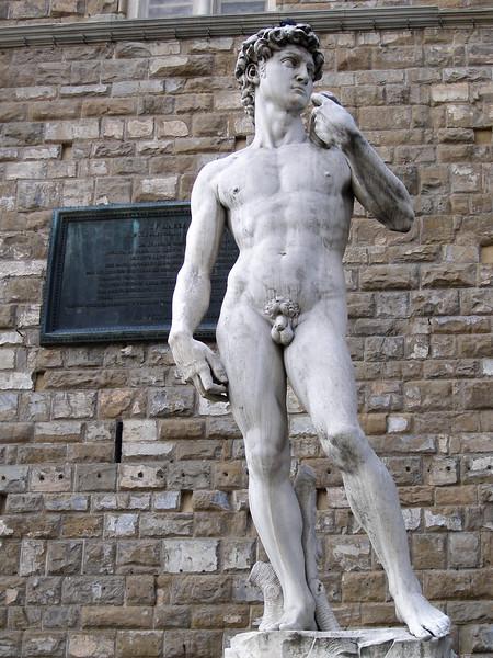 Piazza della Signoria-Palazzo Vecchio-Copy of David