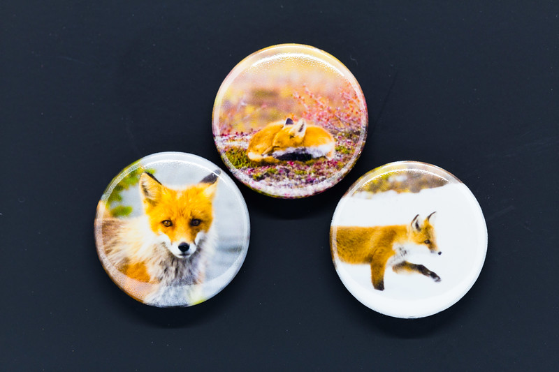 fox trio mag for etsy-7491.jpg