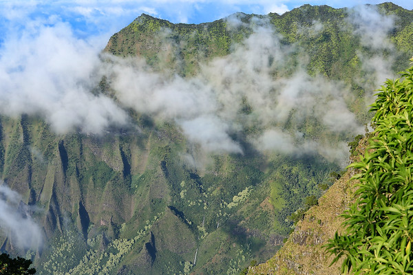 Clouds moving in - Kokee State Park -Kauai