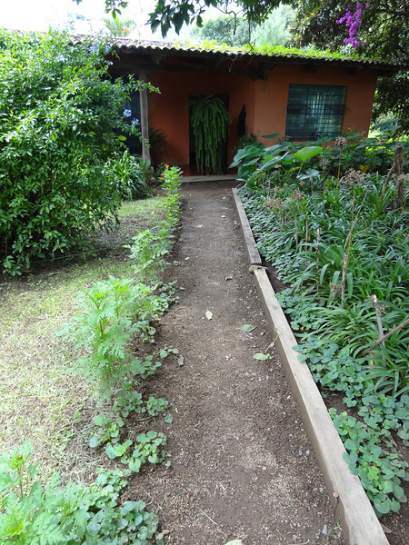 Luky and Chiqui's childhood home on Finca la Folie coffee plantation
