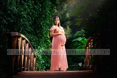 H Pregnancy