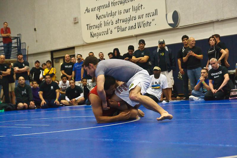 MMA_Houston_20090418_0637.jpg