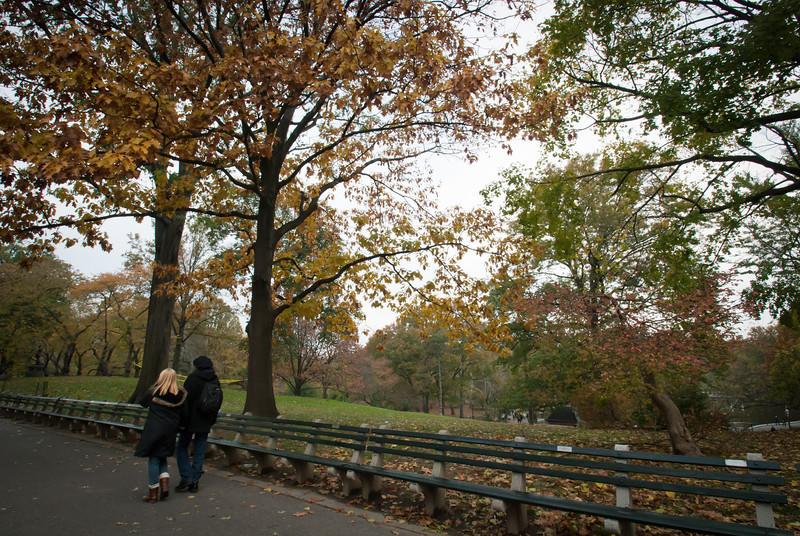 NYC 201211 Central Park (3).jpg