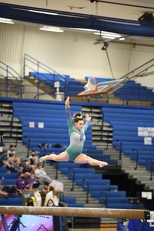 Gymnastics 2/3/21