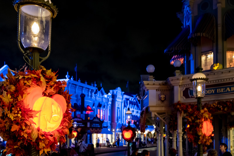 Disney-8261.jpg