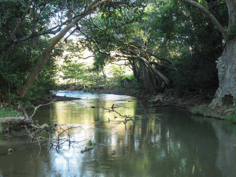 Sri_Lanka17-9549.jpg