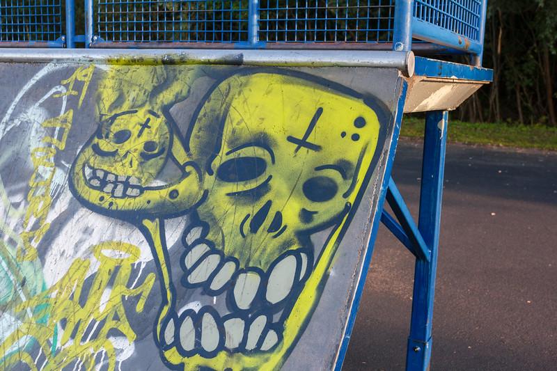 Skateboard-Aug-100.jpg