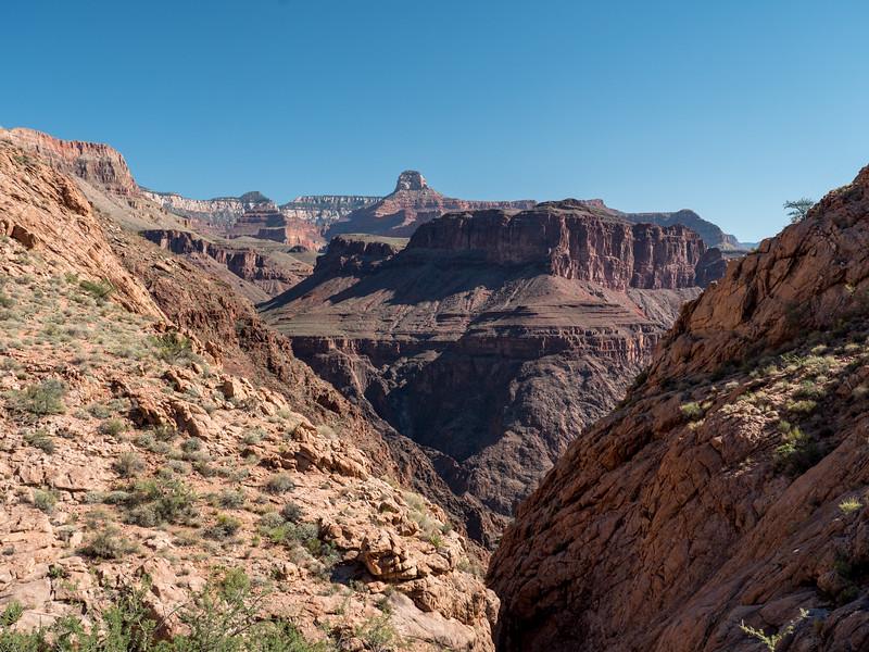Grand Canyon-42.jpg