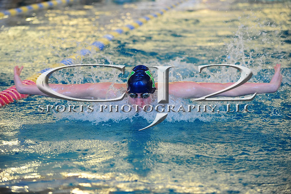 1-4-2014 Woodgrove vs Dominion Swimming
