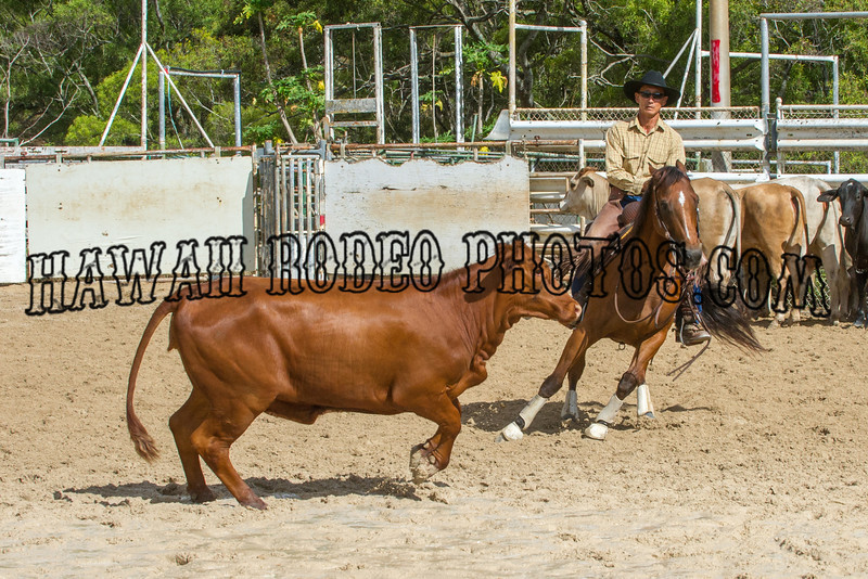 PERFORMANCE HORSE SHOW AUGUST 18 2012