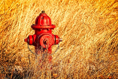 Hydrant Stuff: because they need their own category
