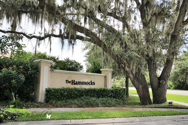3730 Eagle Hammock Dr Sarasota